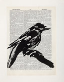 Untitled (Ref. No. 24 / Bird I) by William Kentridge at Annandale Galleries