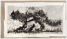 Scribble Cat by William Kentridge at Annandale Galleries