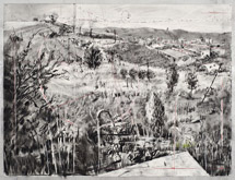 Untitled (Landscape) by William Kentridge at Annandale Galleries