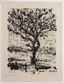 Stone Tree II by William Kentridge at Annandale Galleries